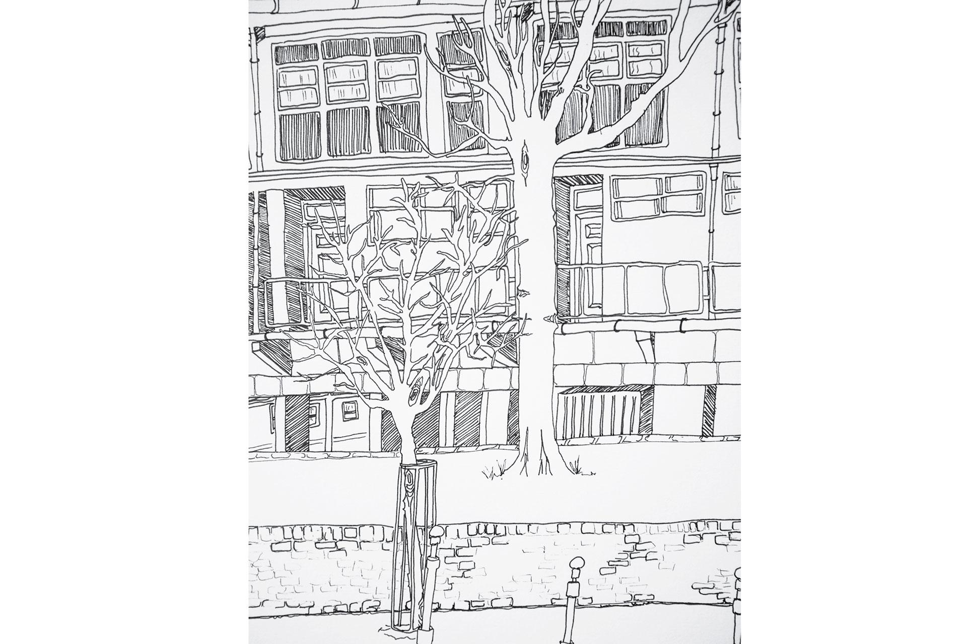 illustration4